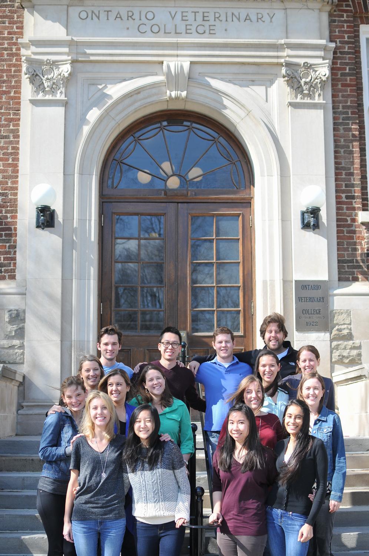 The 2014 Global Vets Team